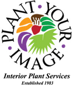 PLANT YOUR IMAGE